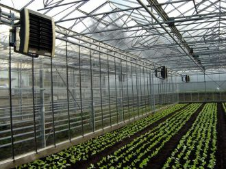 Heating Your Greenhouse